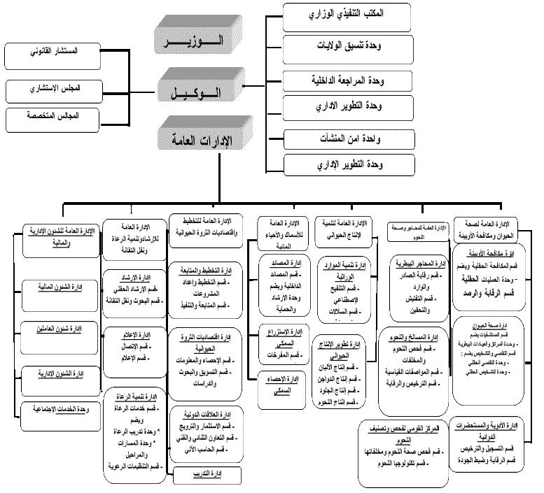 org structure thumb